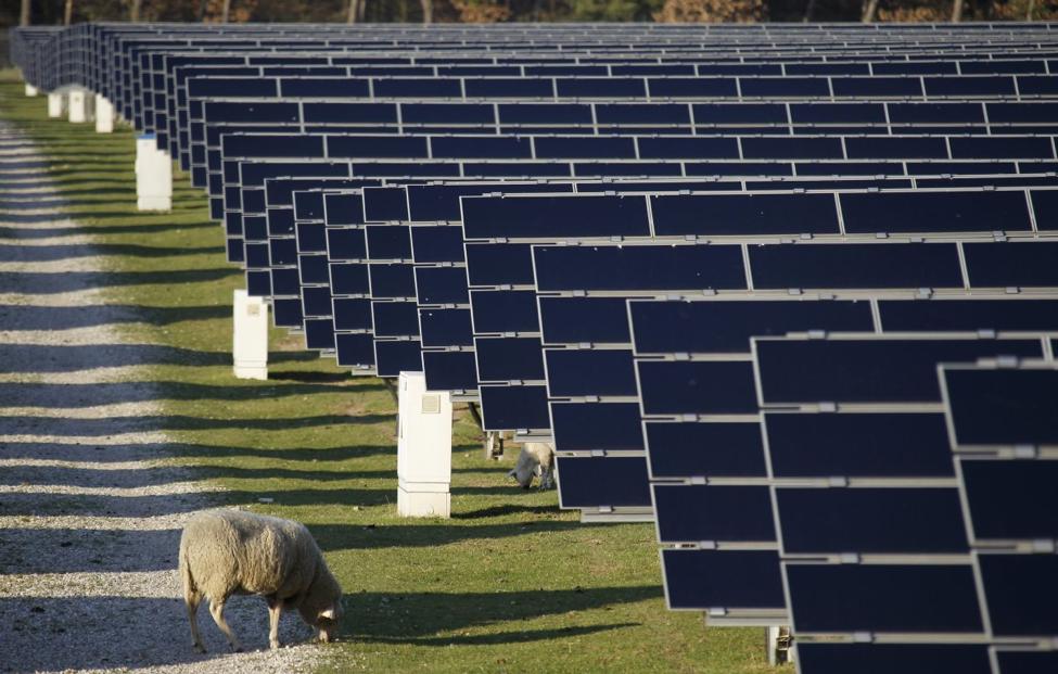 Alemania líder en producción de energía solar