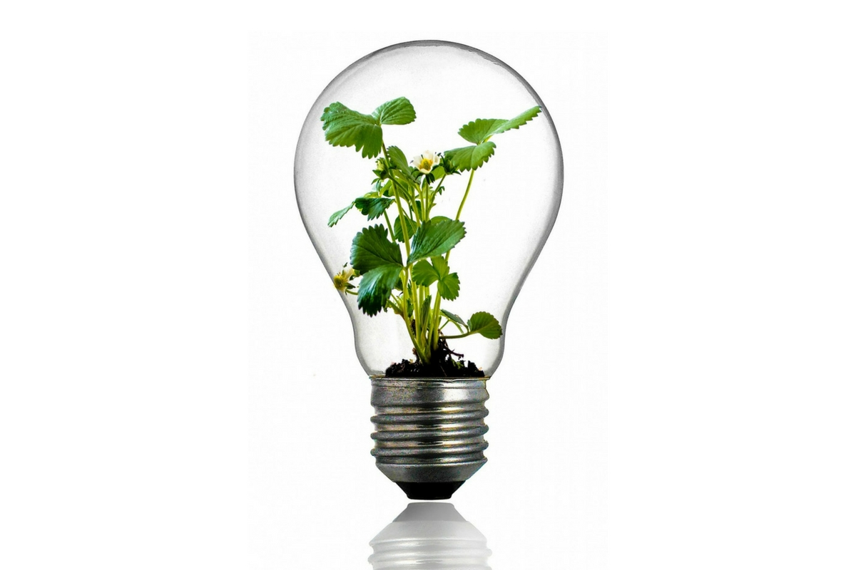 5 tips para ahorrar energía
